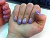 lila glitter and shell crush