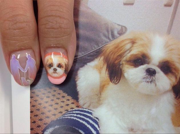 dog paint nail