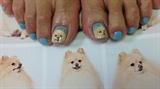 dog nail