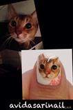 cat painting nail