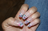 color zebra stripes
