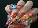 rainbow leo