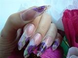 violet flovers