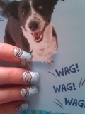 wag the dog zebra