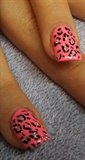 my leopard is pink