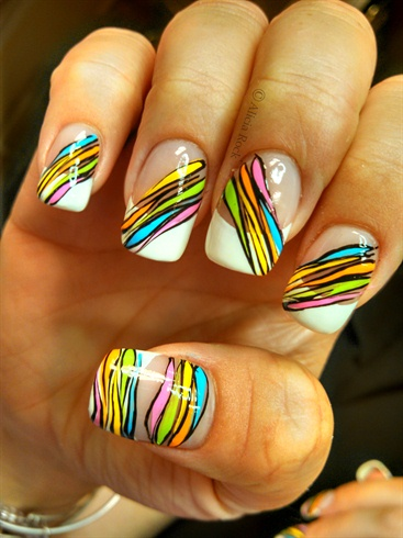 Colored Zebra