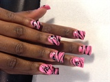 Neon pink zebra