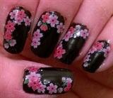 Cherry 🍒 Blossom