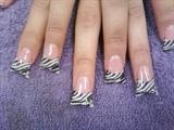 Zebra ducks