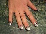 White French Zebra