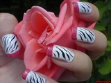 Zebra print  with pink french