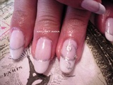 shellac white