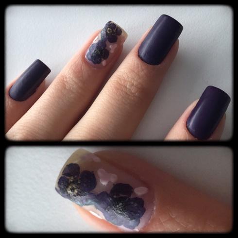 Purple Natural Flowers