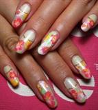 hibiscus paint❤