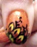 orange and yellow spring flower