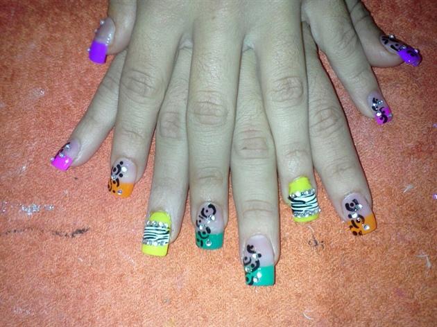 cheetah+zebra colorfull prints
