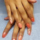 Orange two tone