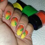 Tropic Palm Shellac Tutorial
