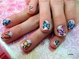 Cute Butterflies