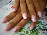 Pastel Pink Gradation