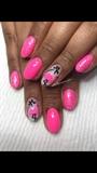 Hot Pink Flamingos