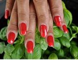 Red Nails On Basilikum