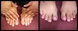 pink zebra prints