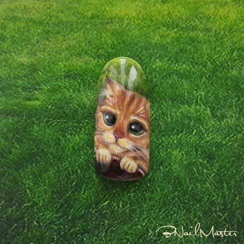 Puss in Boots, Shrek