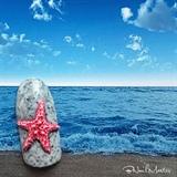 3D Starfish