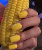 Corn 🌽🌽