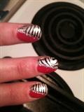 slanted zebra