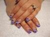 purple pop