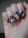 Smoked zebra