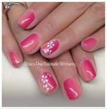 Shade Flamingo And Peach