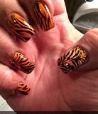 Tiger !!