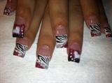 v-day zebra