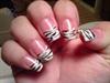 my zebras