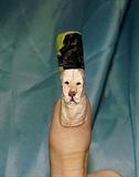 Labrador dog nail art..