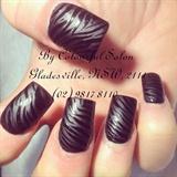 Mate black with shiny zebra