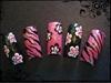 Hot Pink Zebra's Pushing Daisies