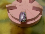 FUnky Purple Leopard Print