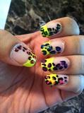 Sunny Leopard