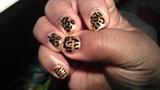 Gold Animal Print w/stripes 3