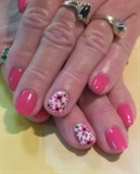 Pink Daisy May