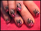 Hot Pink Tips & Zebra