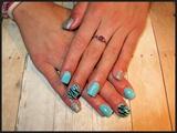 Turquoise zebra design