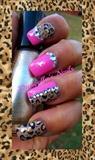 Glamour Cheetah
