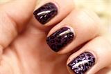 Purple Leopards