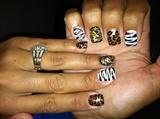 leopard/zebra/idk