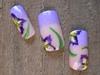 Purple & Yellow Irises